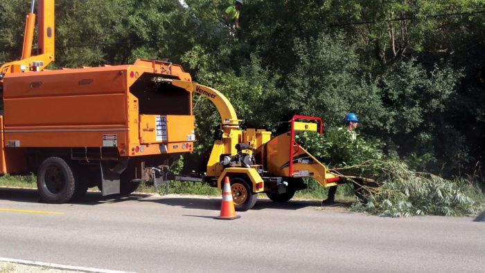 Commercial Tree Services-1-Ft Lauderdale Tree Trimming and Tree Removal Services