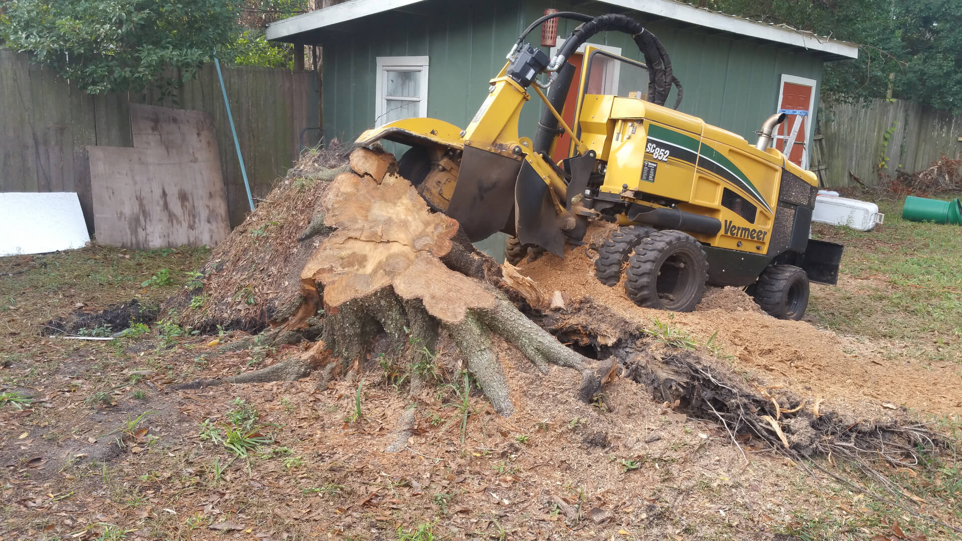 Stump Grinding-2-Ft Lauderdale Tree Trimming and Tree Removal Services