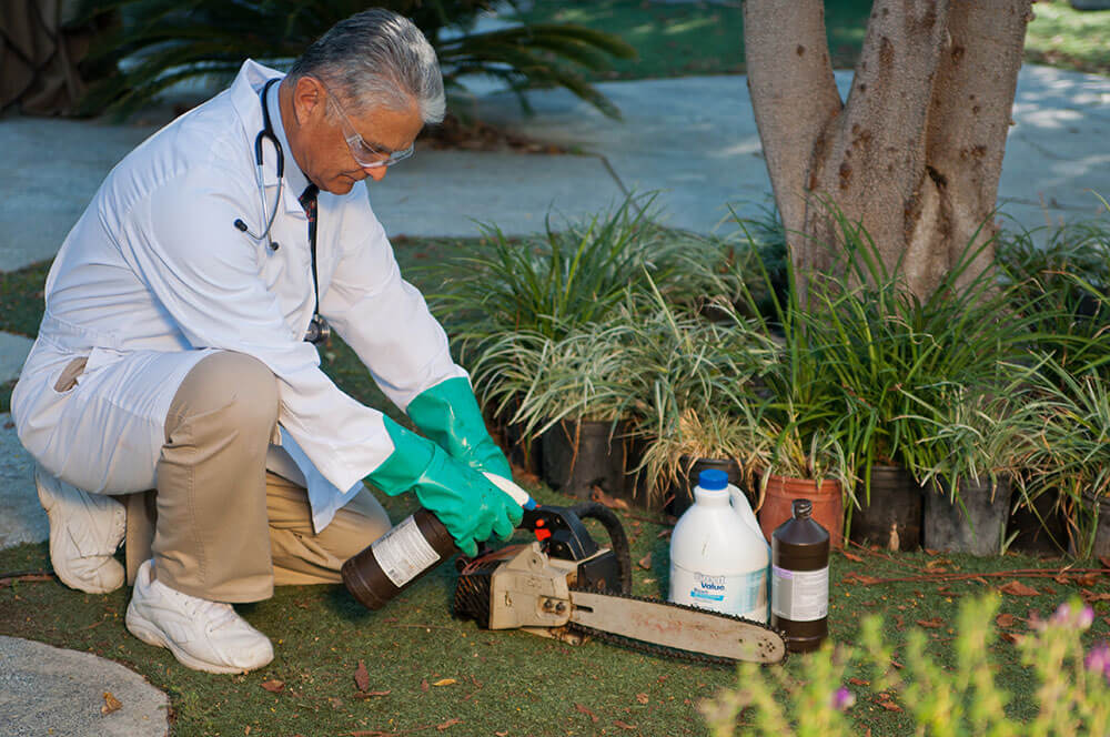 Tree Doctor-2-Ft Lauderdale Tree Trimming and Tree Removal Services